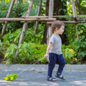 Plan Toys wooden dancing alligator toy push along